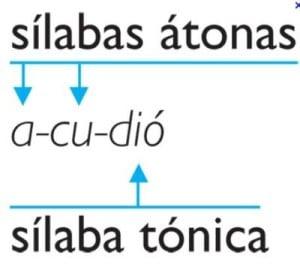 Ejemplos de palabras agudas, tónicas