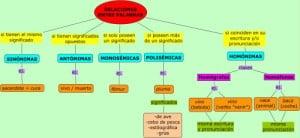 . Ejemplos de homónimos, diferencia con polisemia