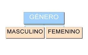 Ejemplos de sustantivos colectivos, género