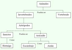 Ejemplo de mapa conceptual, características