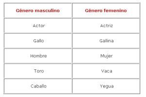 Ejemplos de sustantivos comunes, género gramatical
