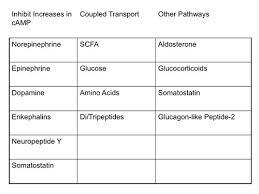 Ejemplos de reacciones químicas, clases