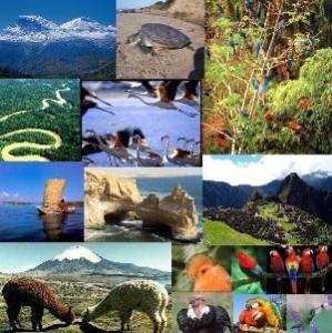Ejemplos de recursos naturales, clases