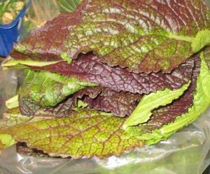 Verduras en inglés,  de hoja verde oscuro