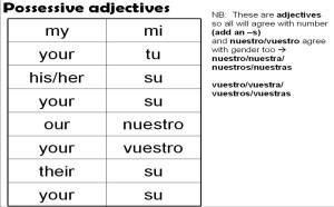 Pronombres personales, adjective case