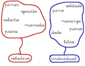 Ejemplos de sustantivos individuales, diferencia con colectivos