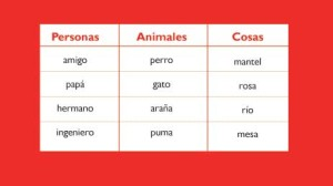 Ejemplos de sustantivos individuales, ejemplos