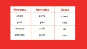Sustantivos individuales, 100 ejemplos