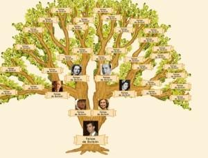 Ejemplo de árbol genealógico, clasificación