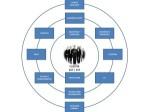 Ejemplos de organigramas de empresas
