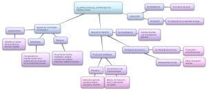 Ejemplos de proyectos productivos, clasificación