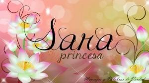 Significado del nombre Sara, características