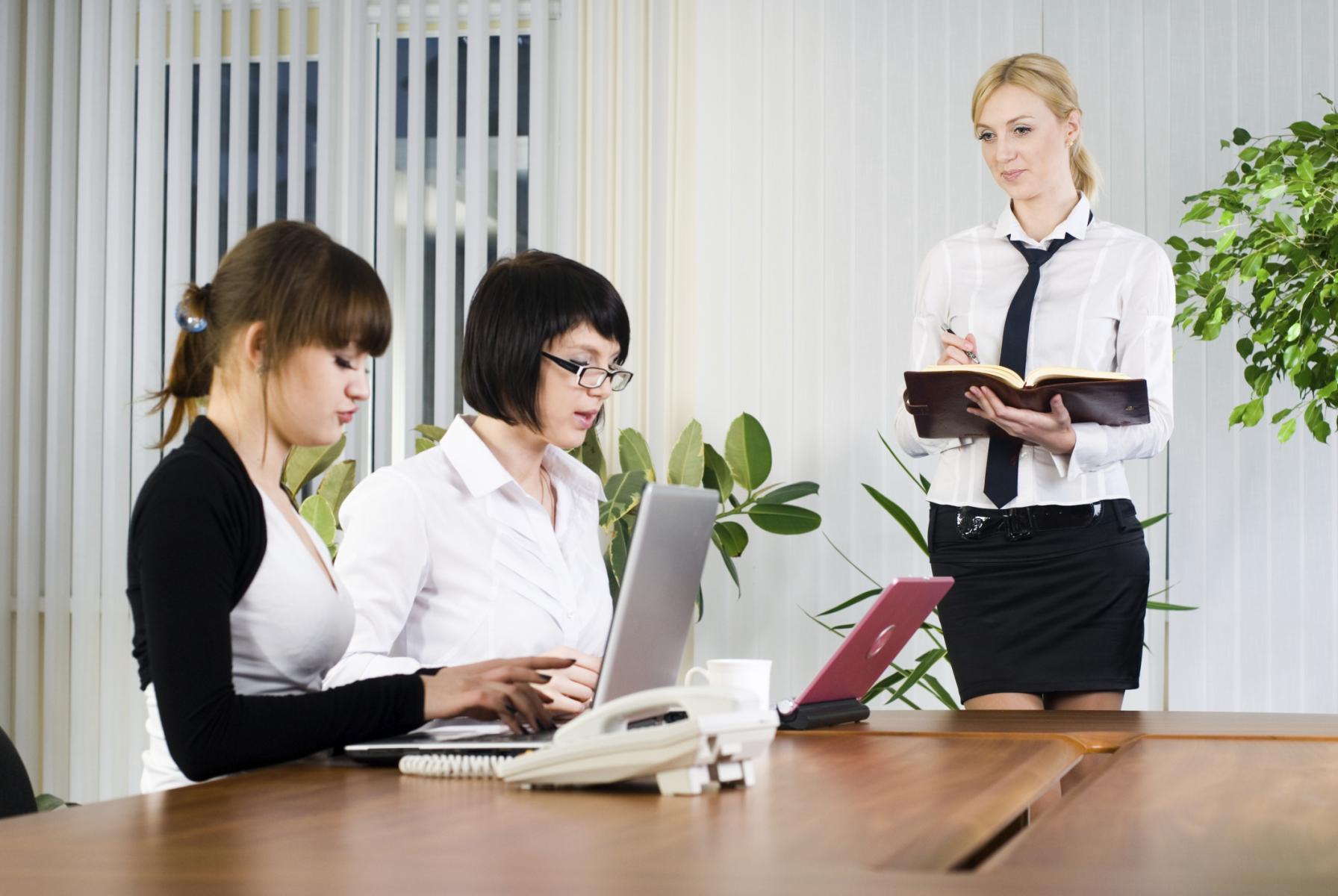 Modelos de oficios aprende a diferenciarlos for Imagenes de oficina de trabajo