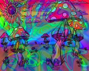 Setas alucinógenas Las alucinaciones