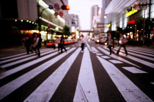 Zebra O Cebra Yahoo Como se escribe...