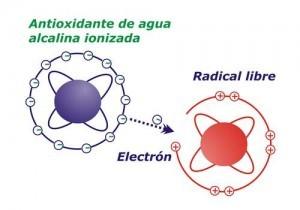Agua ionizada:  Como actúa