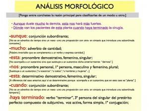 Análisis morfológico:  Soluciones