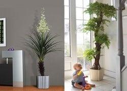 Humidificador casero con ideas fáciles con plantas para interiores