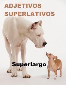 Ejemplo de adjetivos superlativos : Superlargo.