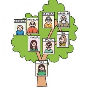 Árbol genealógico y los datos necesarios