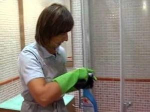 C mo limpiar vidrios ejemplos de - Como limpiar la ducha ...