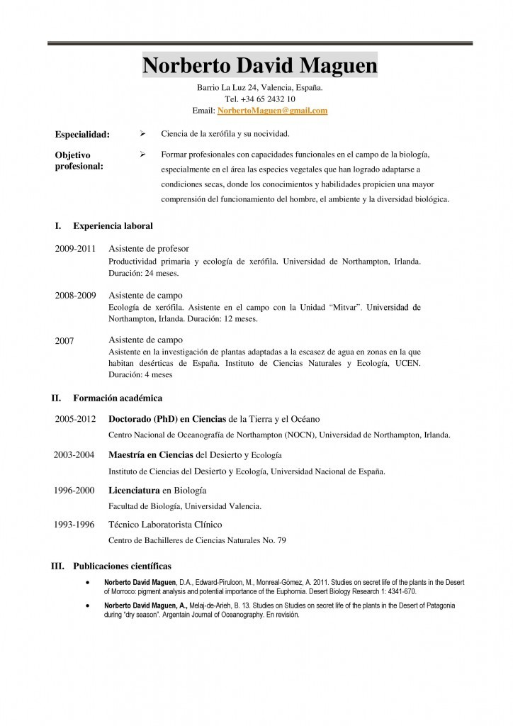 Currículum académico