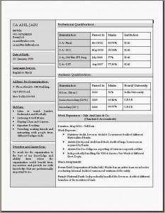 Currículum para llenar