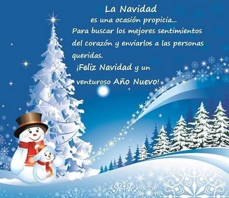 Felicitaciones de navidad y a o nuevo ejemplos de - Dedicatorias para navidad y ano nuevo ...