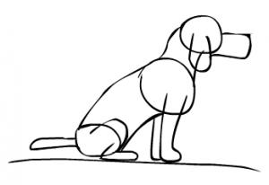 Cómo dibujar un perro