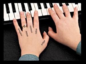 Cómo se llaman los dedos de la mano